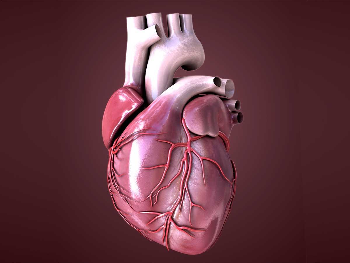 insufficienza-cardiaca-igea-s.antimo-napoli