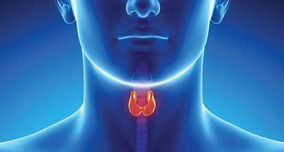Esami per la Tiroide:  FT3,  FT4,  TSH
